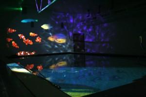 Sensory Pool systems from Sensory Technology Ltd