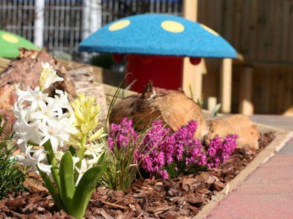 Sensory Gardens for Autism