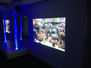 Sensory Room Media Projection
