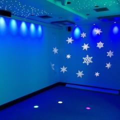 Interactive Sensory Room