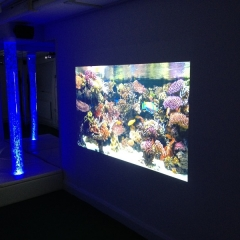Media Based Sensory Room