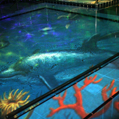 Sensory Pool Themes